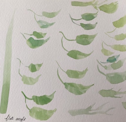Simple leaves practice