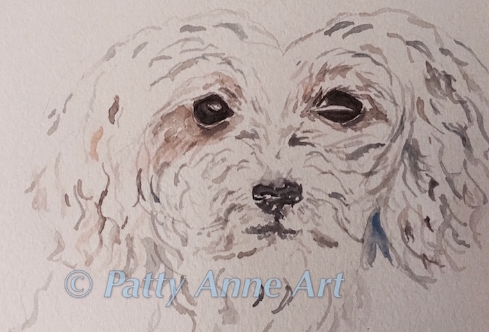 Morkie watercolor - in progress