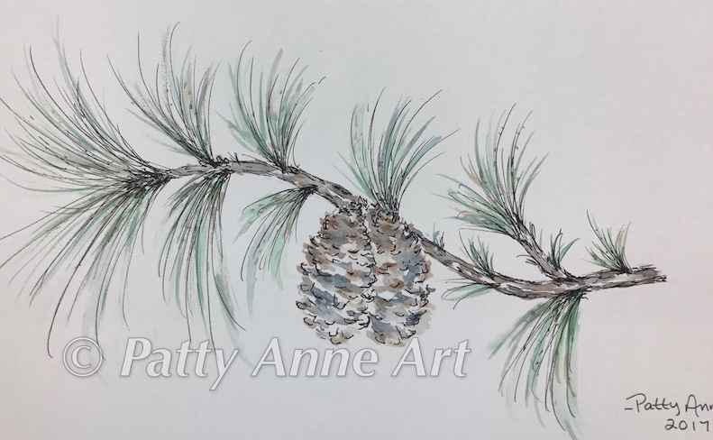 Pine Branch with pinecones