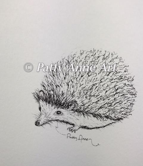 Hedgehog sketch in ink