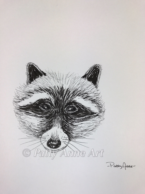 Raccoon - ink