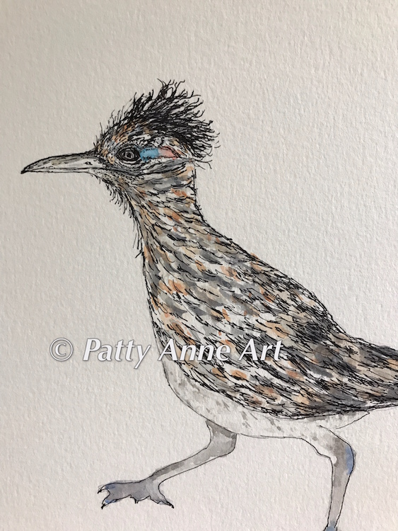 Road Runner - ink and watercolor