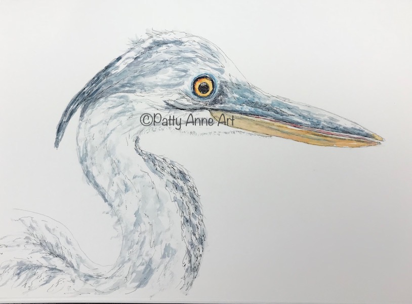 Great Blue Heron - part 1