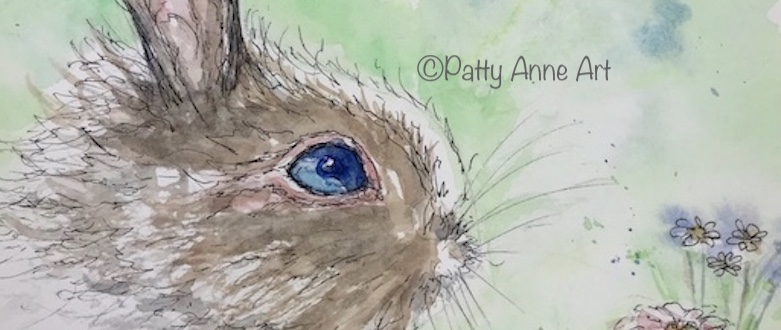 Quiet Thursday – Bunny Blue Eyes