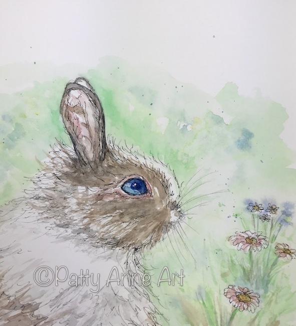 Bunny Blue eyes