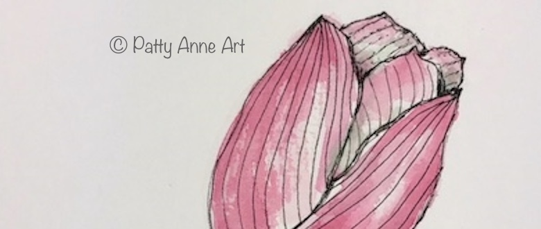 Tulip – ink andwatercolor