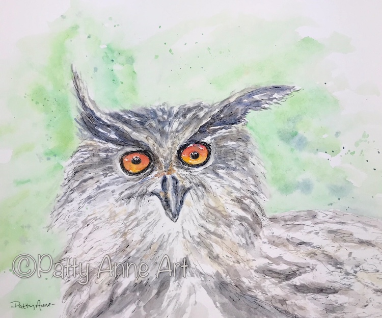 Owl ink and watercolor