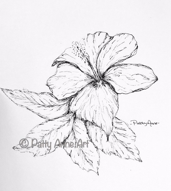 Hibiscus Ink Sketch