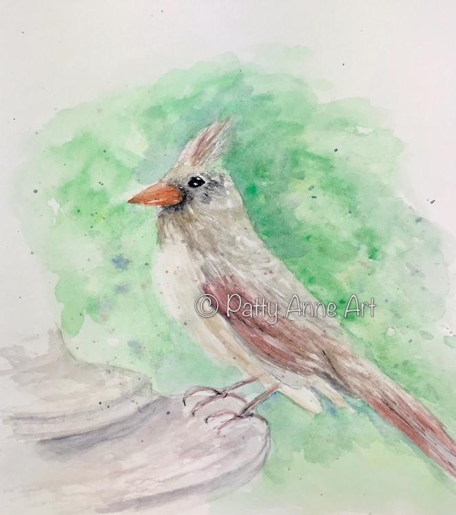Female Cardinal watercolor