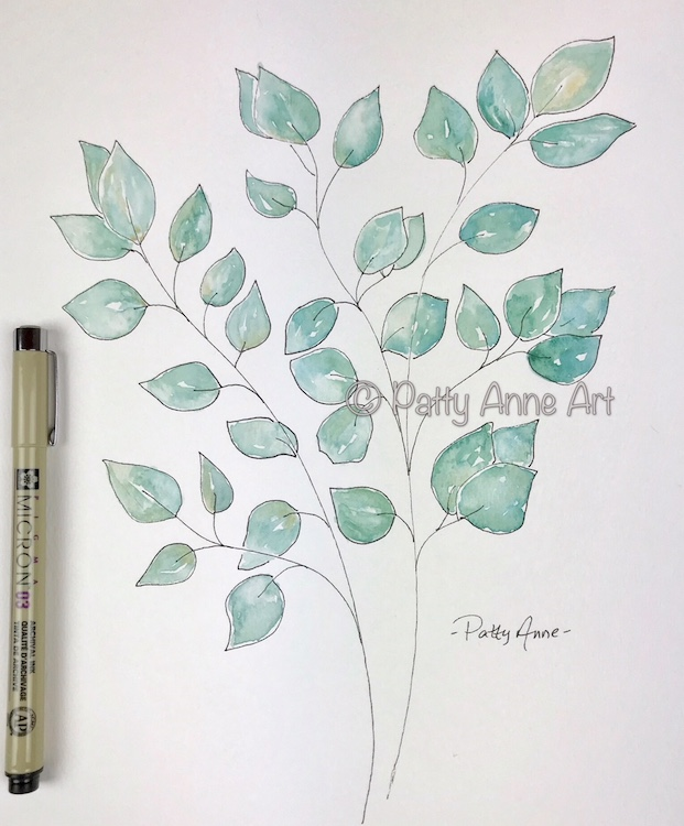 Eucalyptus leaves ink and watercolor