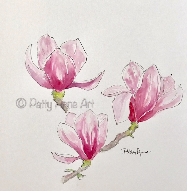 Magnolia ink and watercolor
