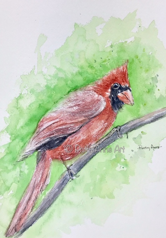 Male Cardinal watercolor