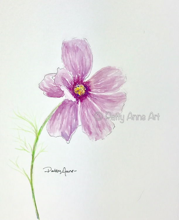Cosmos flower watercolor painting