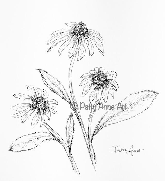 Black-eyed Susans ink sketch