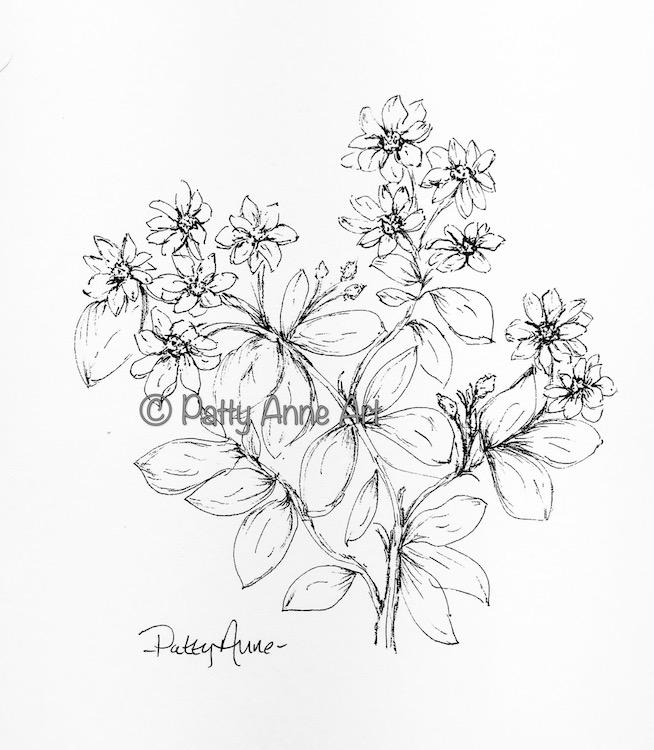 Floral for inktober