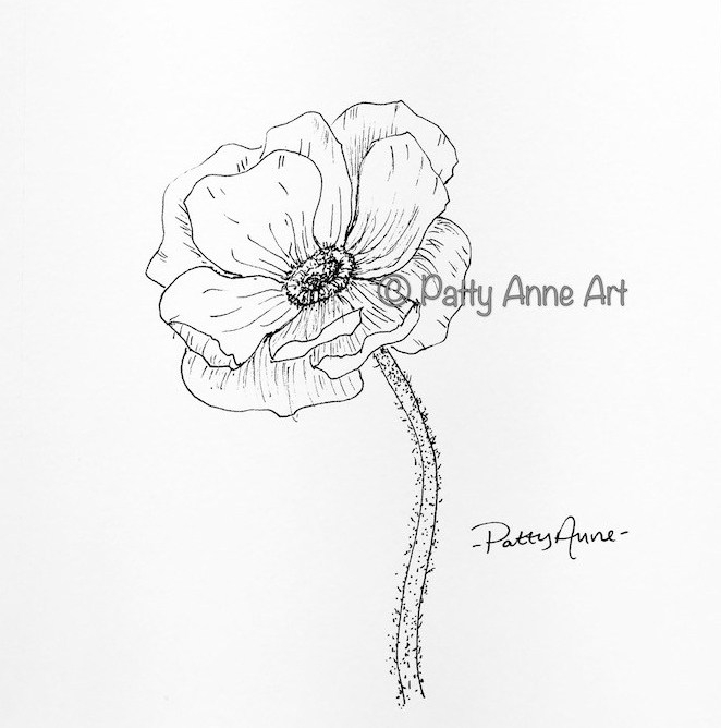 Poppy ink sketch