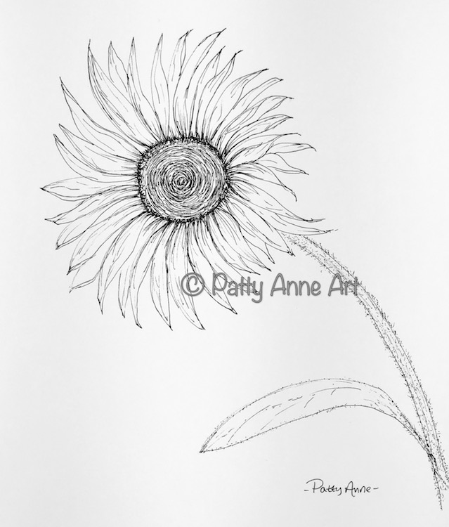 Sunflower ink sketch