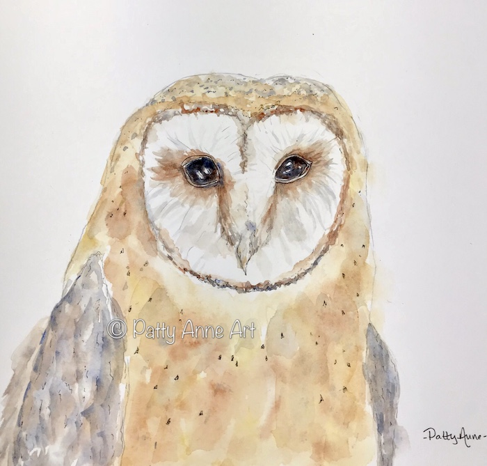 Barn owl watercolor painting