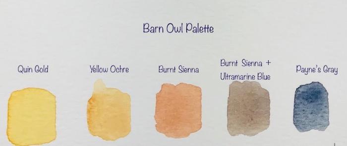 Barn owl palette