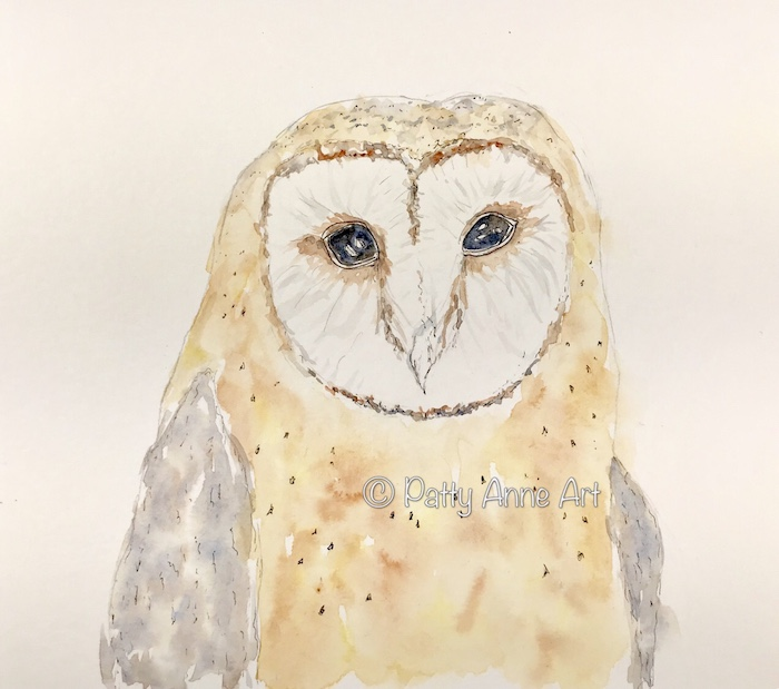 Barn owl watercolor 2nd wash
