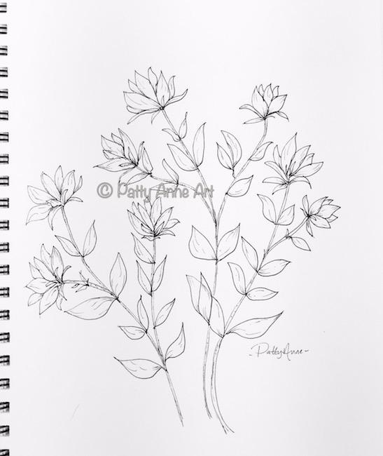 flowers and vines ink sketch