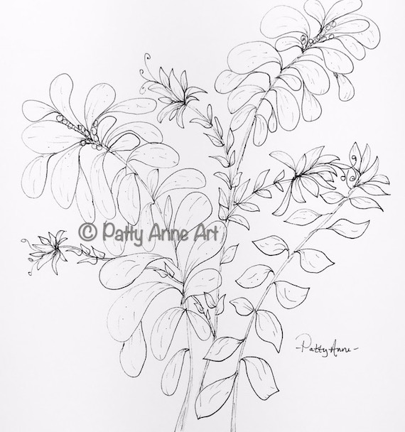 garden leaves ink sketch