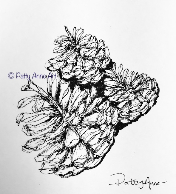 pine cones ink sketch