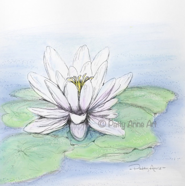 white waterlily digital painting