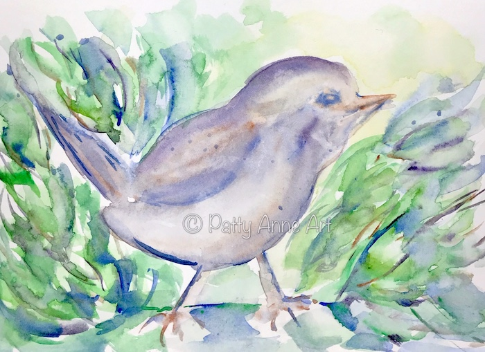 direct watercolor birdie first wash