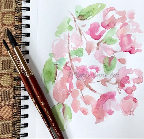 Dogwood watercolor under painting