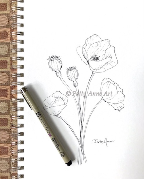 Poppies ink sketch