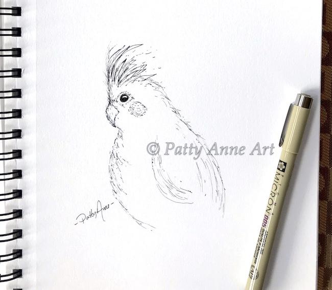 parrot ink sketch - minimal lines