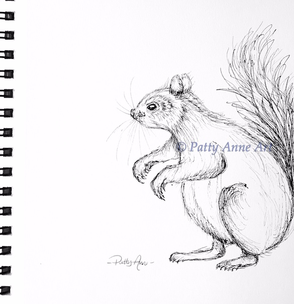 little squirrel ink sketch