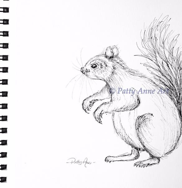 little squirrel ink sketch