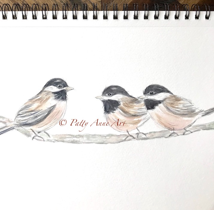 adding color to the the chickadees