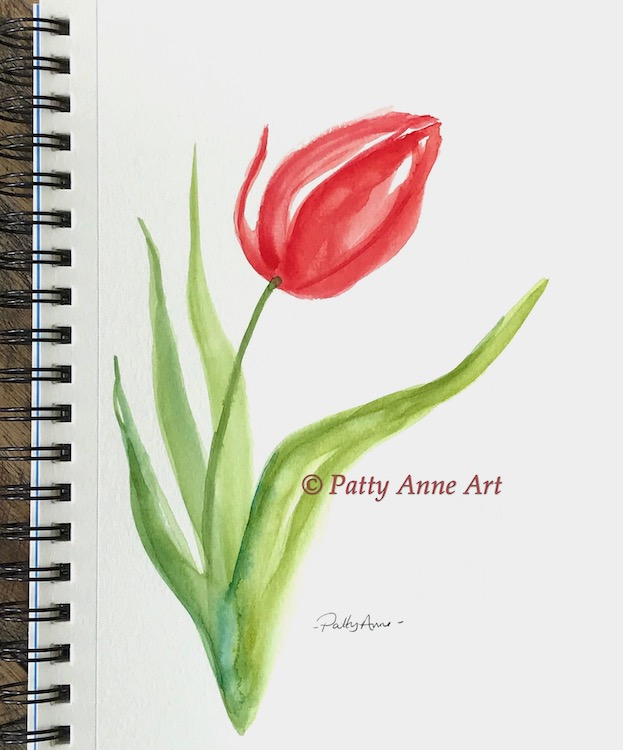 single red tulip watercolor